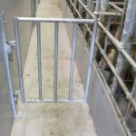 NK_zoekbeer poortjes (4)